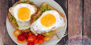 Dr. Nandi's Fried Egg and Avocado Toast