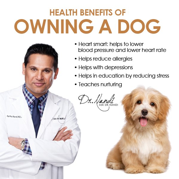 the wonderful benefits of pet ownership These benefits aren't necessarily unique to pet ownership according to the national institutes for health (nih), just being in the presence of a companion animal is associated with improvements in mental, social, and physiologic health status.