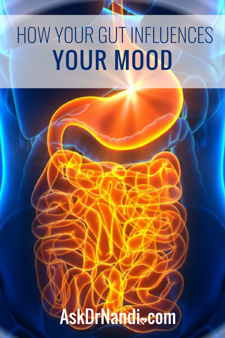 How Your Gut Influences Your Mood