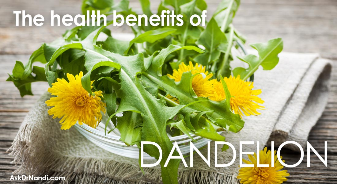 Health Benefits of Dandelion