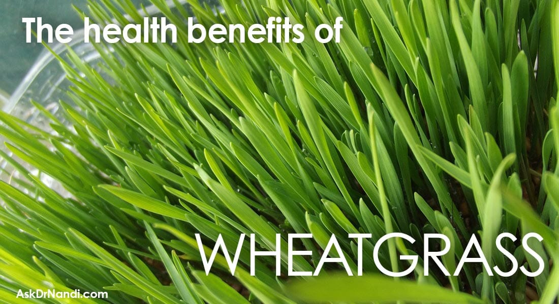 Nandi_Health_Benefits_Wheat_Grass1100x600_edited