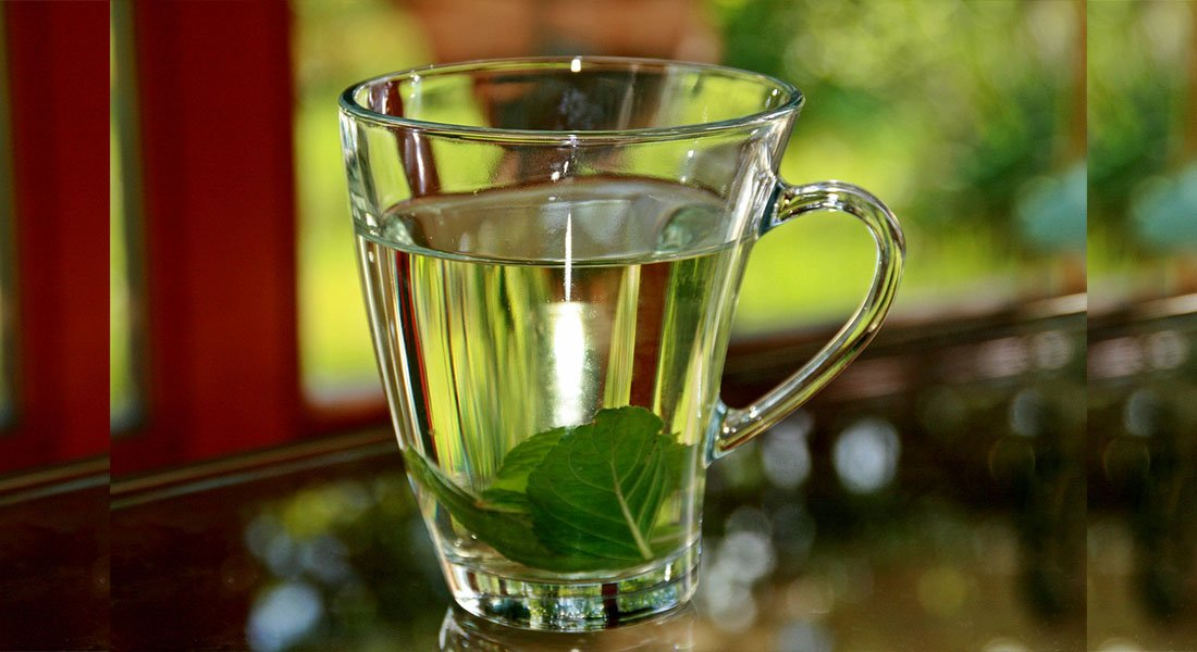 Mint Leaves in Clear Glass of Water