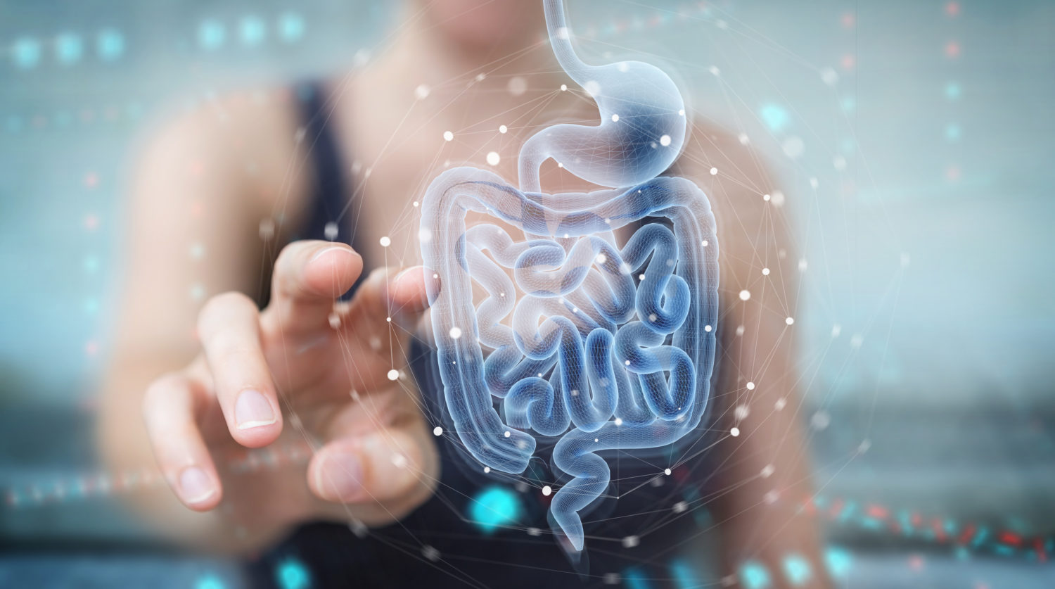 How Your Gut Bacteria Can Influence Your Weight